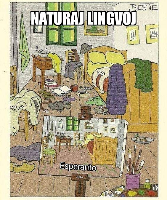 meme about natural languages being a dirty room and esperanto being tidy