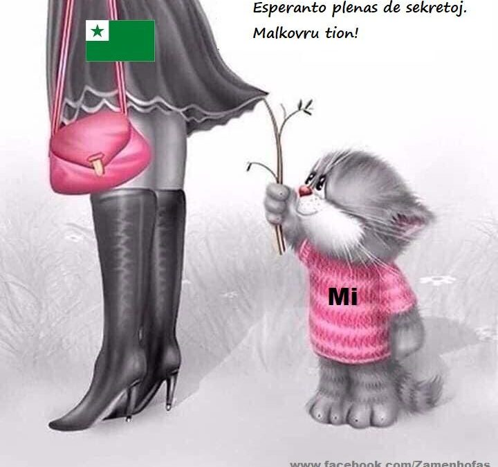 meme about unlocking the secrets of Esperanto